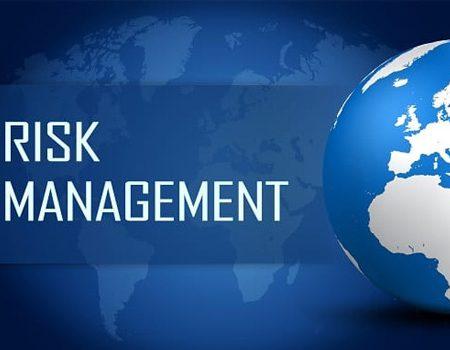 PMI – Risk Management Professional®